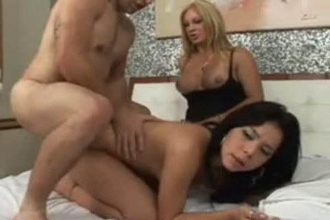 three-some Action That gratified Their Selves