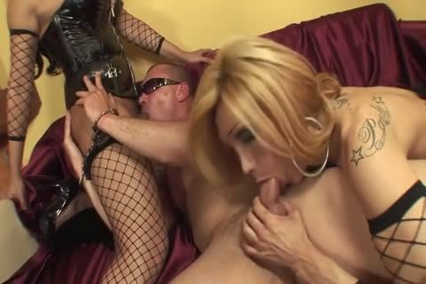 threesome - Super slutty dominatrix trannies Destroy dude
