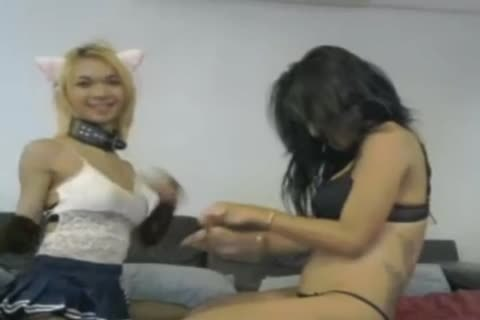 White Hunk glad And Teased By Two sleazy tgirl Escort