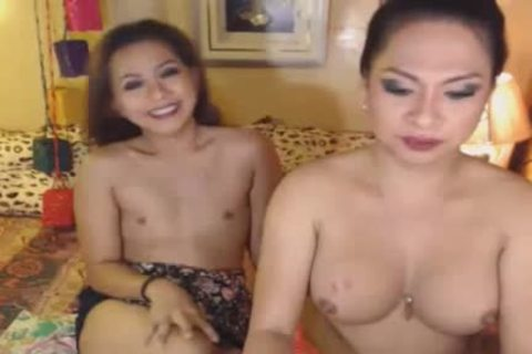 cute shelady gets Her Hard cock Eaten By Her ally