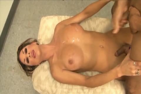 large Titty trannies 12 - Ariel Everitts