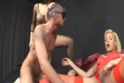 3some sucking And driling Session With Two trannys