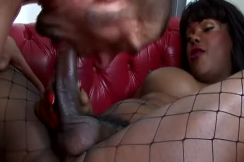 black Euro shemale receives An booty poke From White man