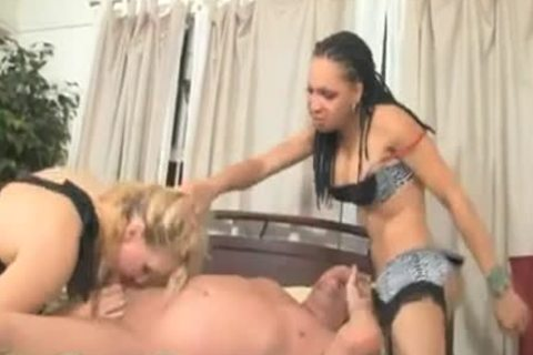 chick And twink Try A threesome With A ladyboy