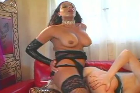 busty angel poked By sheboy And bisexualsual
