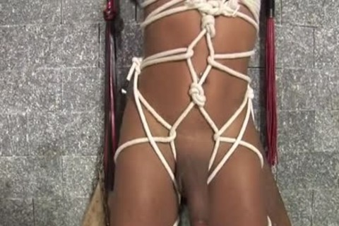 bound latin chick rod Sucked